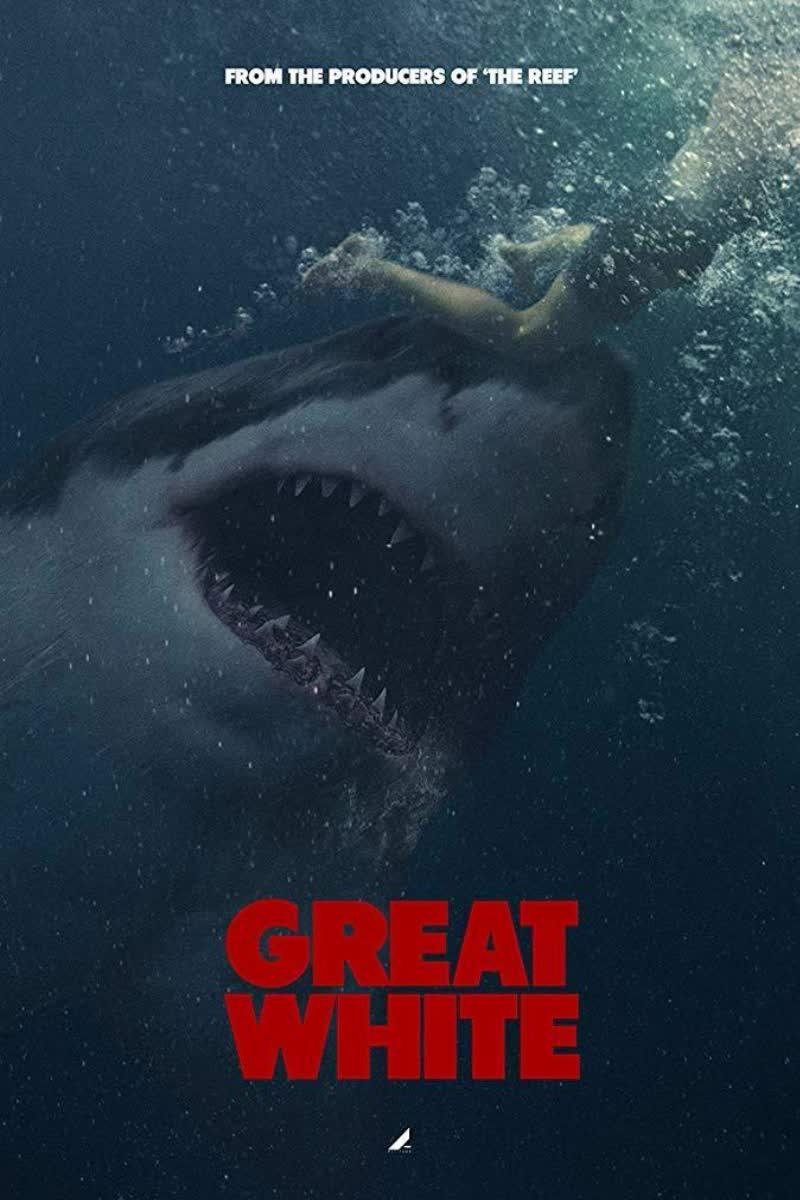 დიდი თეთრი ზვიგენი